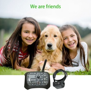 Dog Training & Outdoor Wireless Fence Containment System with Remote-Controlled Rechargeable Transmitter & Training Collar - Black